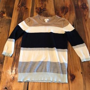 J. Crew Colorblock Teddy Sweater